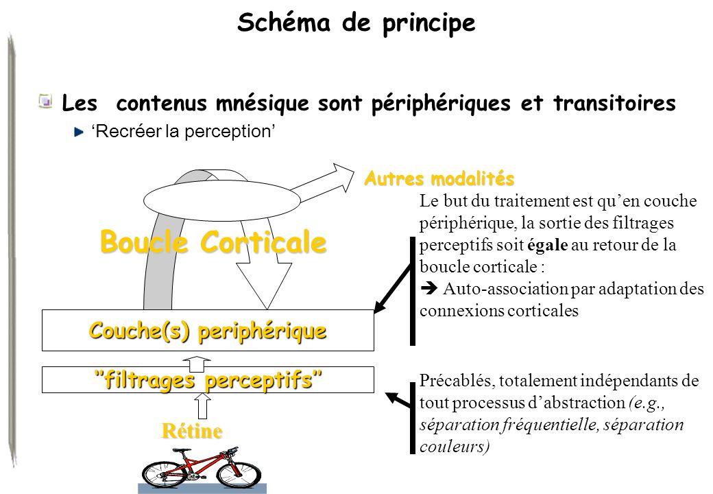 Schéma de principe Les contenus mnésique sont périphériques et transitoires Recréer la perception Précablés, totalement indépendants de tout processus