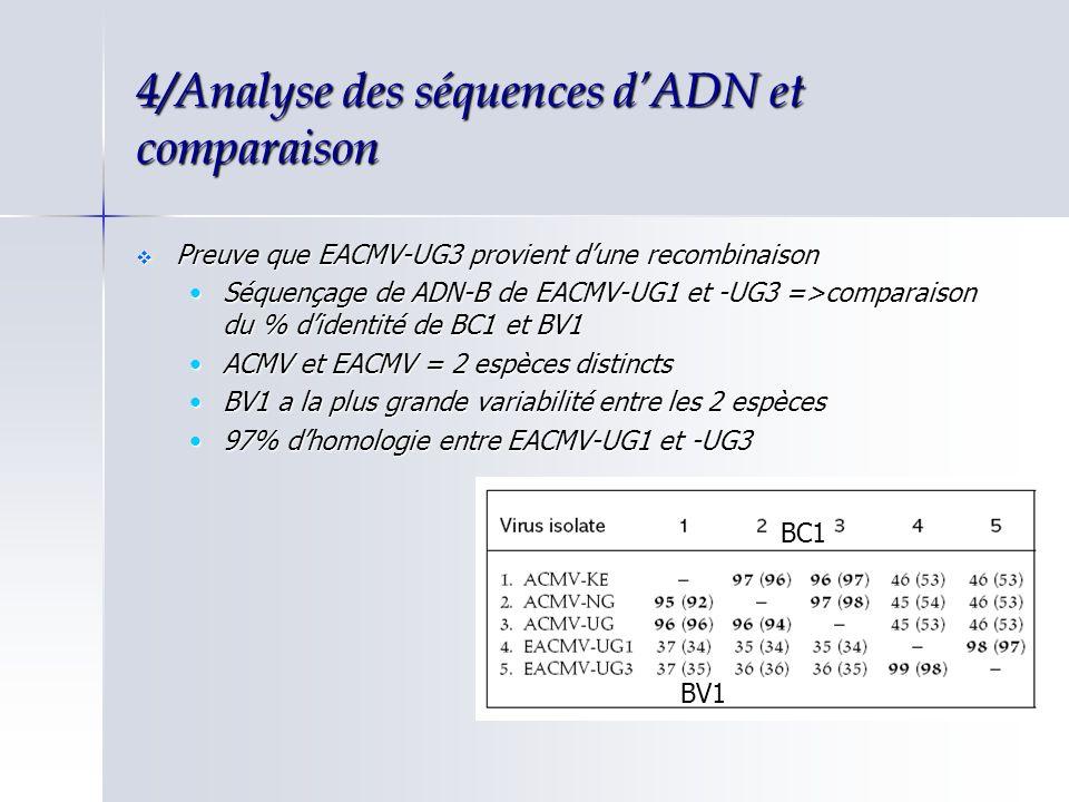 4/Analyse des séquences dADN et comparaison Preuve que EACMV-UG3 provient dune recombinaison Preuve que EACMV-UG3 provient dune recombinaison Séquença