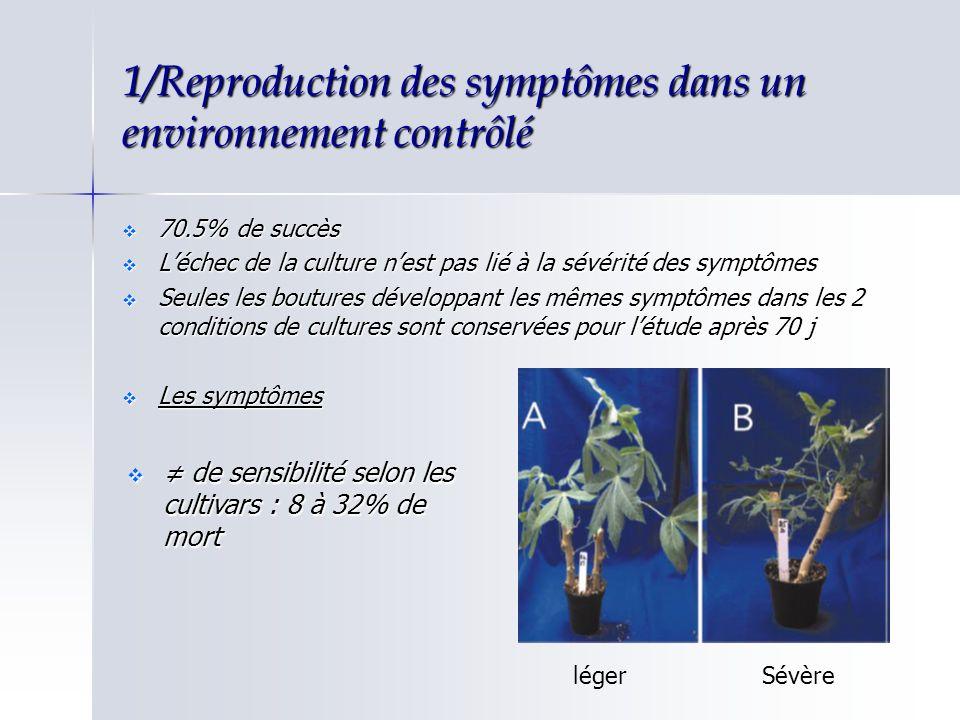 1/Reproduction des symptômes dans un environnement contrôlé 70.5% de succès 70.5% de succès Léchec de la culture nest pas lié à la sévérité des symptô