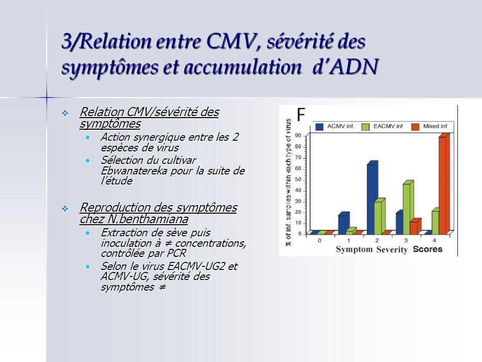 3/Relation entre CMV, sévérité des symptômes et accumulation dADN Relation accumulation ADN/sévérité des symptômes Southern blot Relation accumulation ADN/sévérité des symptômes Southern blot Il existe une relation positive entre laccumulation dADN et la sévérité des symptômes Il existe une relation positive entre laccumulation dADN et la sévérité des symptômes EACMV-UG2/MldACMV-UG +EACMV-UG2 EACMV-UG2/Svr