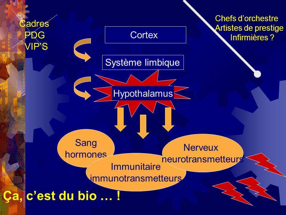 Cortex Système limbique Sang hormones Immunitaire immunotransmetteurs Nerveux neurotransmetteurs Chefs dorchestre Artistes de prestige Infirmières ? C