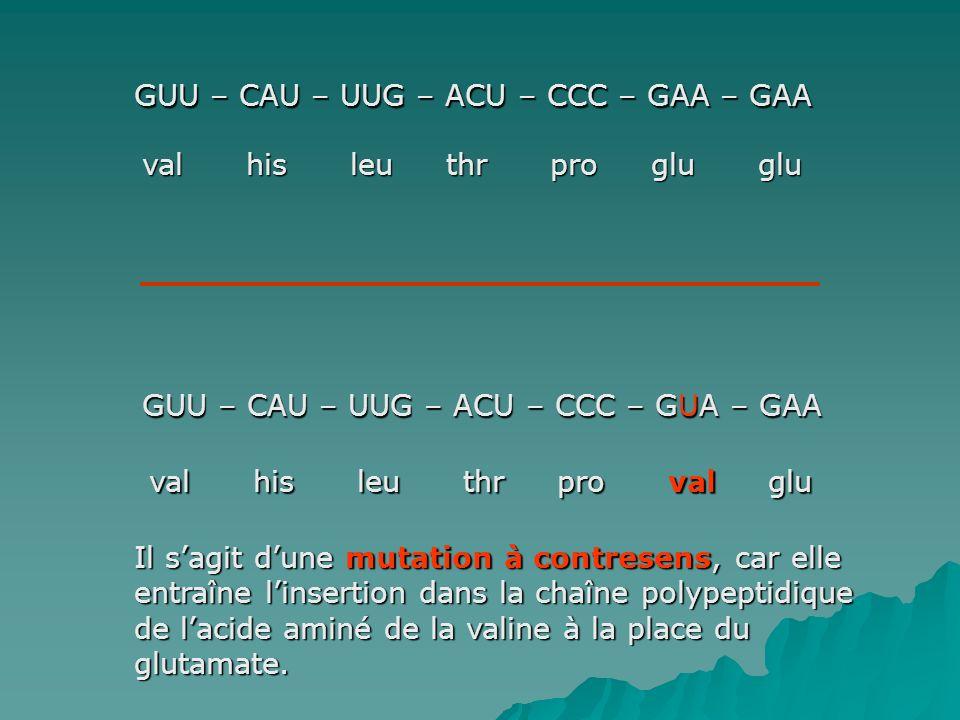 GUU – CAU – UUG – ACU – CCC – GAA – GAA val his leu thr pro glu glu GUU – CAU – UUG – ACU – CCC – GUA – GAA val his leu thr pro val glu Il sagit dune mutation à contresens, car elle entraîne linsertion dans la chaîne polypeptidique de lacide aminé de la valine à la place du glutamate.