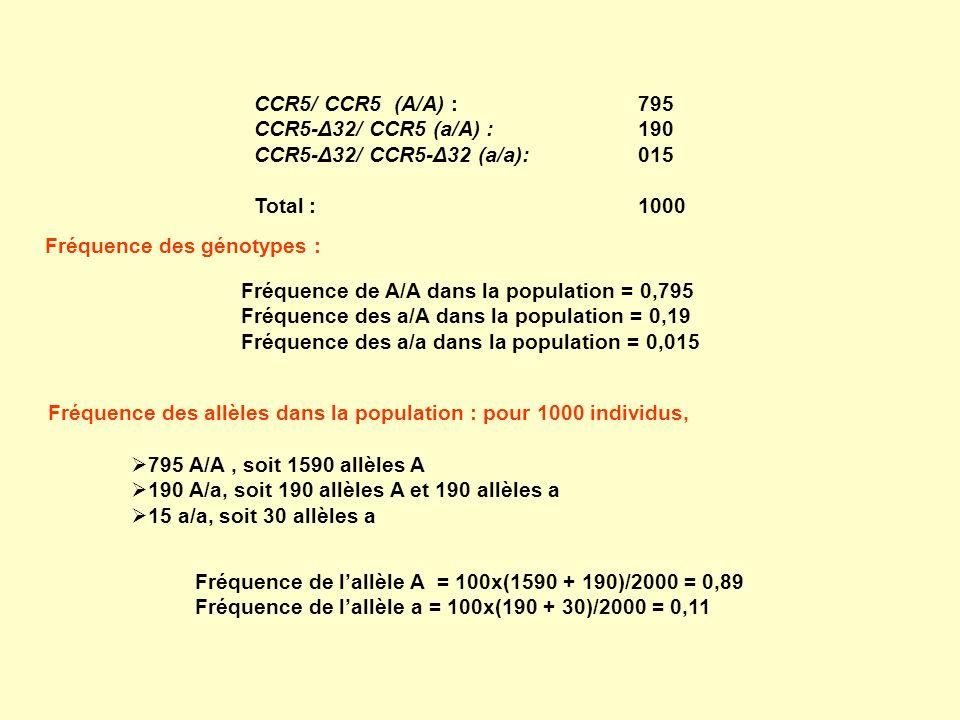 CCR5/ CCR5 (A/A) : 795 CCR5-Δ32/ CCR5 (a/A) :190 CCR5-Δ32/ CCR5-Δ32 (a/a):015 Total :1000 Fréquence de A/A dans la population = 0,795 Fréquence des a/