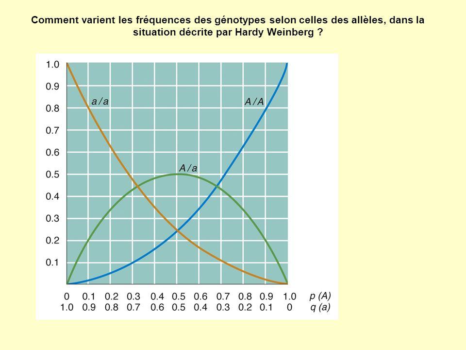 Comment varient les fréquences des génotypes selon celles des allèles, dans la situation décrite par Hardy Weinberg ?