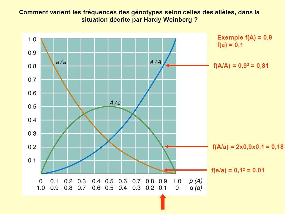 f(A/A) = 0,9 2 = 0,81 f(a/a) = 0,1 2 = 0,01 f(A/a) = 2x0,9x0,1 = 0,18 Exemple f(A) = 0,9 f(a) = 0,1 Comment varient les fréquences des génotypes selon celles des allèles, dans la situation décrite par Hardy Weinberg ?