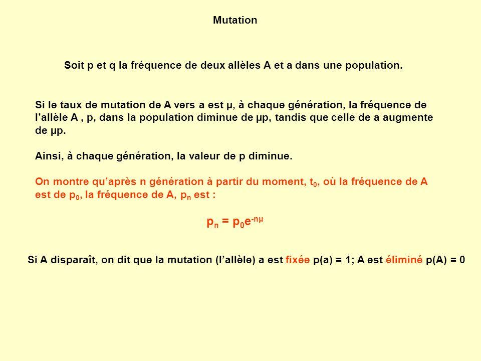 Mutation Soit p et q la fréquence de deux allèles A et a dans une population. Si le taux de mutation de A vers a est µ, à chaque génération, la fréque