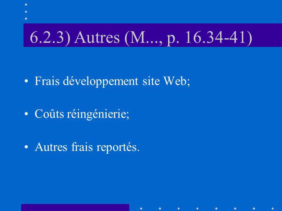 6.2.3) Autres (M..., p. 16.34-41) Frais développement site Web; Coûts réingénierie; Autres frais reportés.