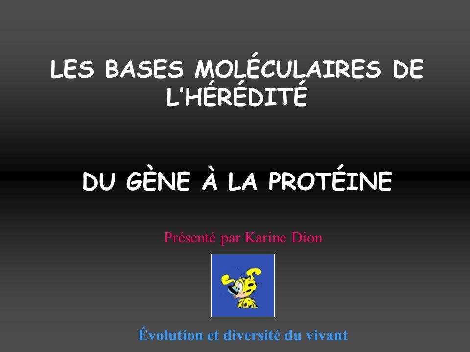 LES BASES MOLÉCULAIRES DE LHÉRÉDITÉ DU GÈNE À LA PROTÉINE Évolution et diversité du vivant Présenté par Karine Dion