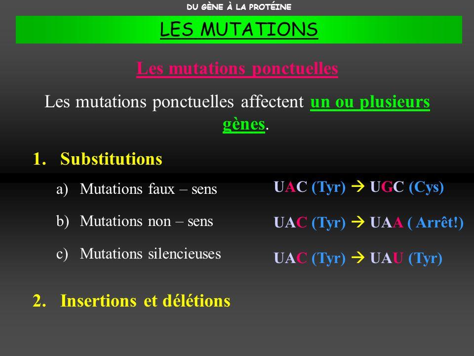 Les mutations ponctuelles Les mutations ponctuelles affectent un ou plusieurs gènes. 1.Substitutions a)Mutations faux – sens b)Mutations non – sens c)