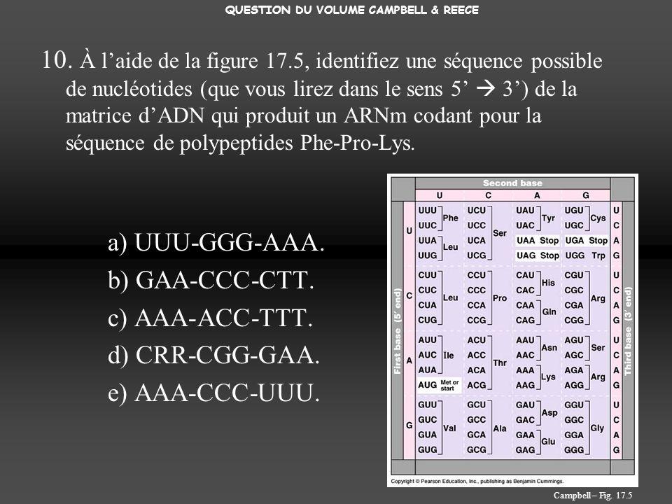 10. À laide de la figure 17.5, identifiez une séquence possible de nucléotides (que vous lirez dans le sens 5 3) de la matrice dADN qui produit un ARN