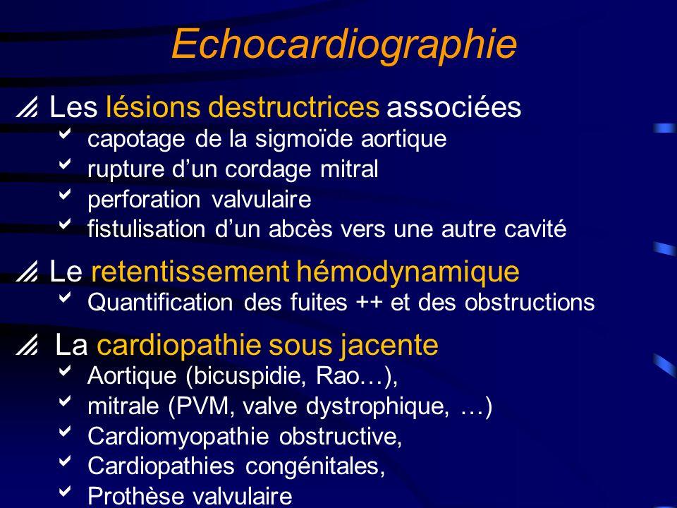 Echocardiographie Examen très important Pour le diagnostic positif Pour lévaluation hémodynamique et le diagnostic de sévérité Pour la prise en charge thérapeutique Décision chirurgicale Suivi sous traitement médical (répéter léchographie au minimum une fois par semaine si le patient est traité médicalement)