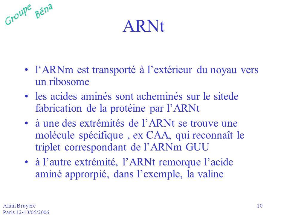 GroupeBéna Alain Bruyère Paris 12-13/05/2006 10 ARNt lARNm est transporté à lextérieur du noyau vers un ribosome les acides aminés sont acheminés sur