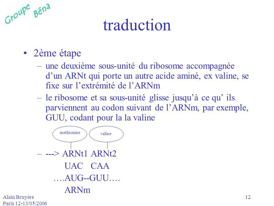 GroupeBéna Alain Bruyère Paris 12-13/05/2006 12 traduction 2ème étape –une deuxième sous-unité du ribosome accompagnée dun ARNt qui porte un autre aci