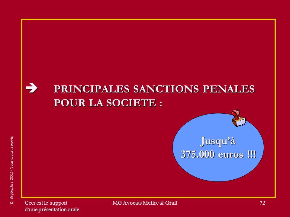 © Septembre 2005 - Tous droits réservés Ceci est le support d'une présentation orale MG Avocats Meffre & Grall72 PRINCIPALES SANCTIONS PENALES POUR LA