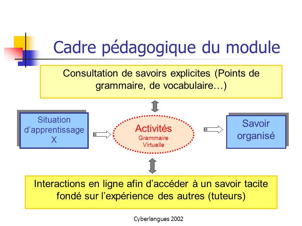 Cyberlangues 2002 Cadre pédagogique du module Situation dapprentissage X Savoir organisé Activités Grammaire Virtuelle Interactions en ligne afin dacc