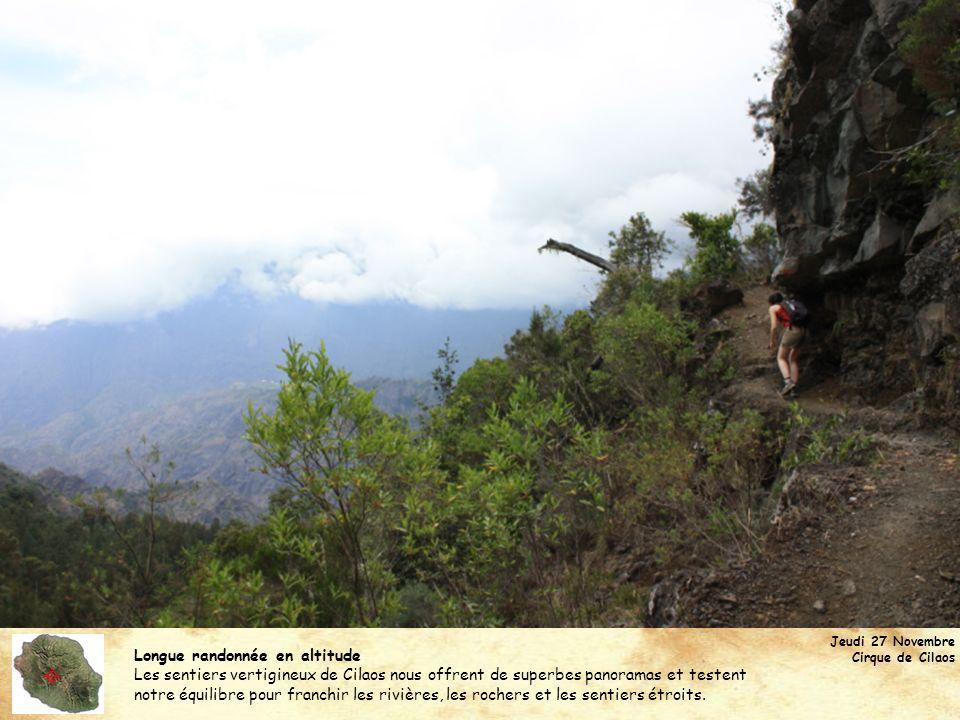 Longue randonnée en altitude Les sentiers vertigineux de Cilaos nous offrent de superbes panoramas et testent notre équilibre pour franchir les rivièr