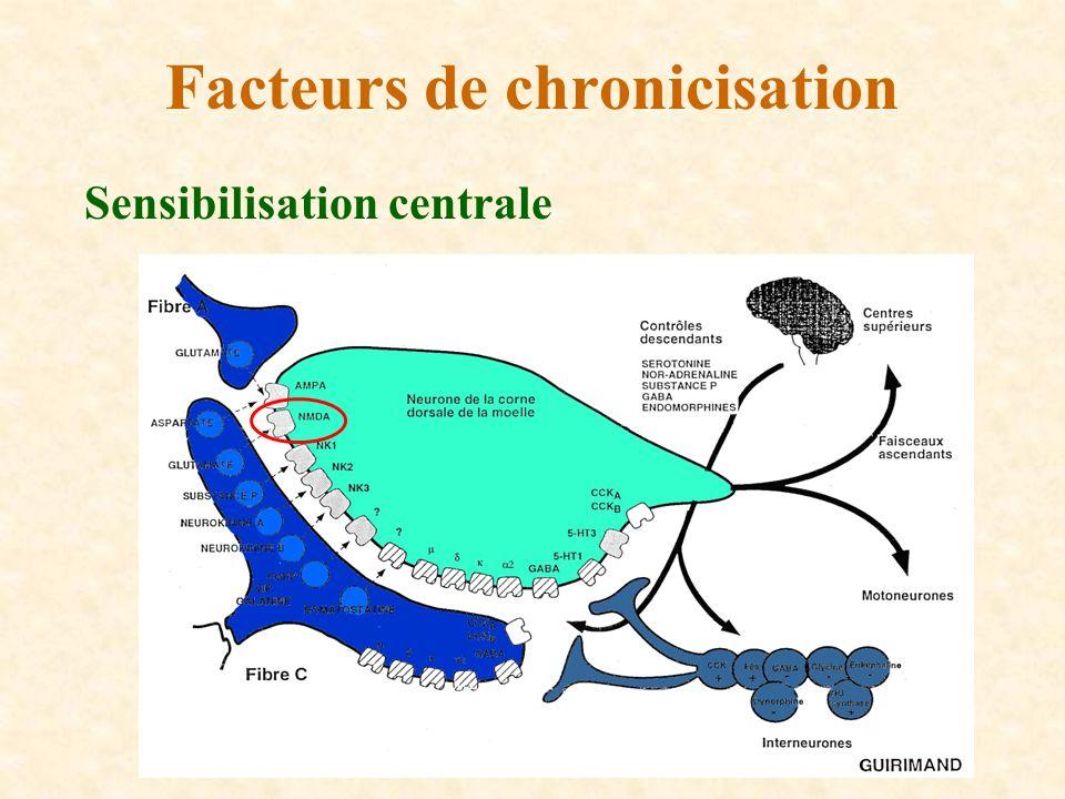 Sensibilisation centrale Facteurs de chronicisation