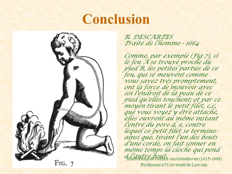 Conclusion R. DESCARTES Traité de l'homme - 1664 Comme, par exemple (Fig 7), si le feu A se trouve proche du pied B, les petites parties de ce feu, qu