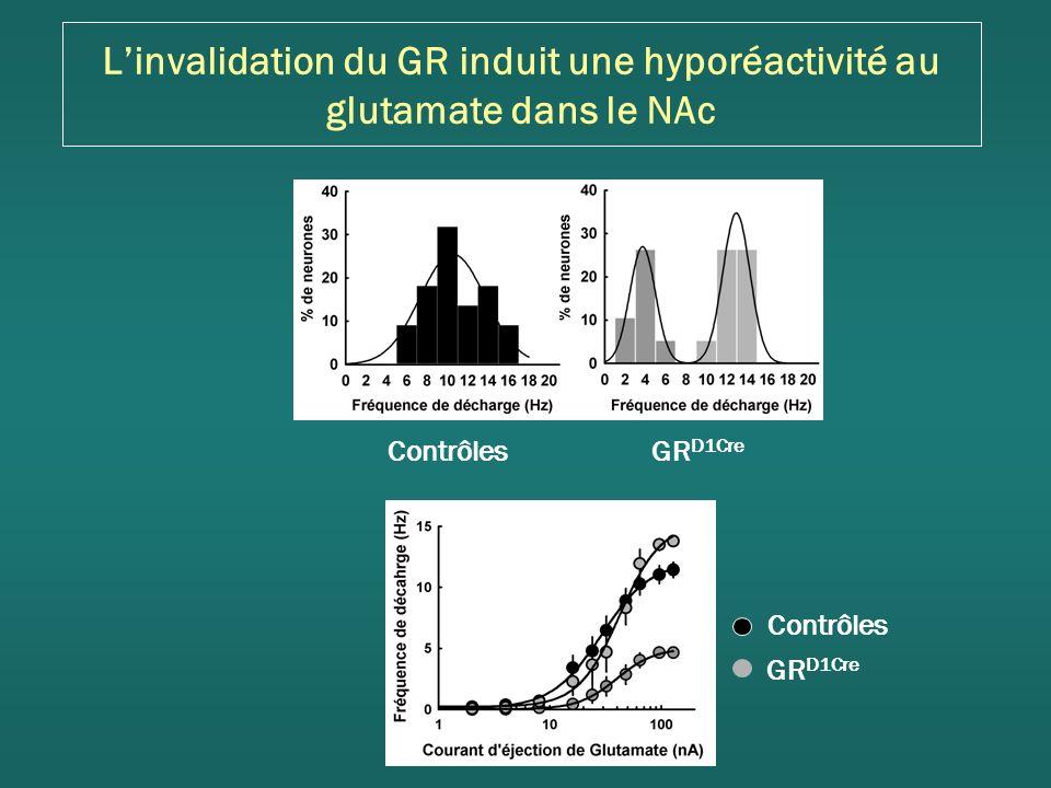 Linvalidation du GR induit une hyporéactivité au glutamate dans le NAc GR D1Cre Contrôles GR D1Cre