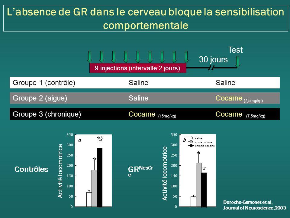 Diminution des propriétés motivationnelles de la cocaïne en absence de GR dans le cerveau Cage dauto-administration Days 1234567891011 Nose-Pokes 0 5 10 15 20 25 30 35 40 45 50 a FR1FR2FR3FR5 Acquisition Trou inactif -GR NesCre Trou actif- GR NesCre Trou actif -GR loxP Trou inactif -GR loxP Deroche-Gamonet et al, Journal of Neuroscience, 2003