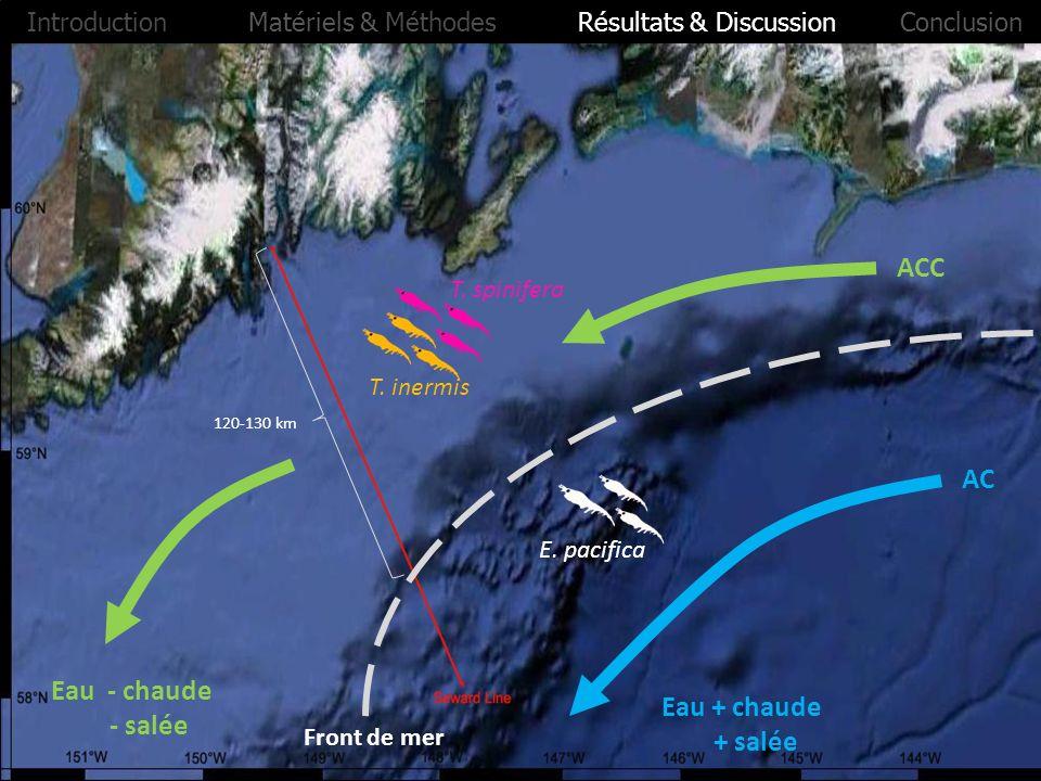 ACC AC Front de mer 120-130 km Eau - chaude - salée Eau + chaude + salée T. inermis T. spinifera E. pacifica Introduction Matériels & Méthodes Résulta
