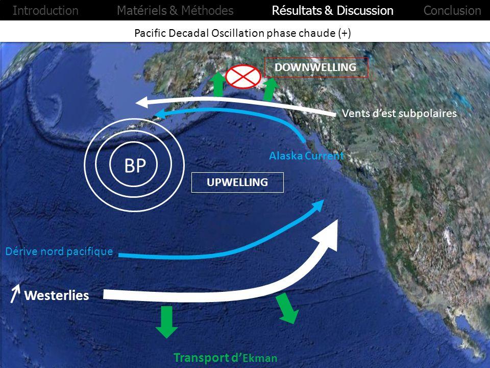 Pacific Decadal Oscillation phase chaude (+) UPWELLING DOWNWELLING Westerlies BP Alaska Current Transport d Ekman Introduction Matériels & Méthodes Ré