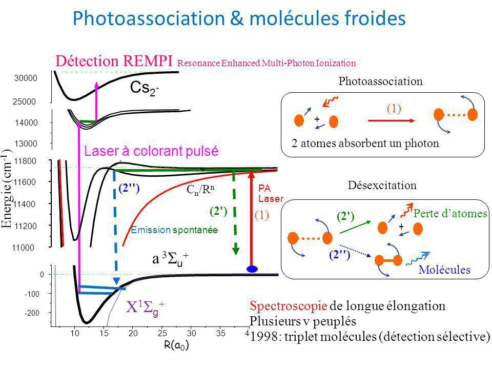 Photoassociation 2 atomes absorbent un photon (1) Désexcitation (2 ) (2 ) Molécules Perte datomes Spectroscopie de longue élongation Plusieurs v peuplés 1998: triplet molécules (détection sélective) Photoassociation & molécules froides C n /R n Détection REMPI Resonance Enhanced Multi-Photon Ionization