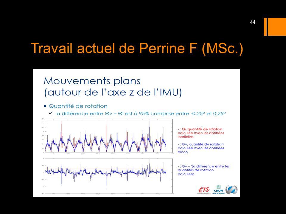 Travail actuel de Perrine F (MSc.) 44