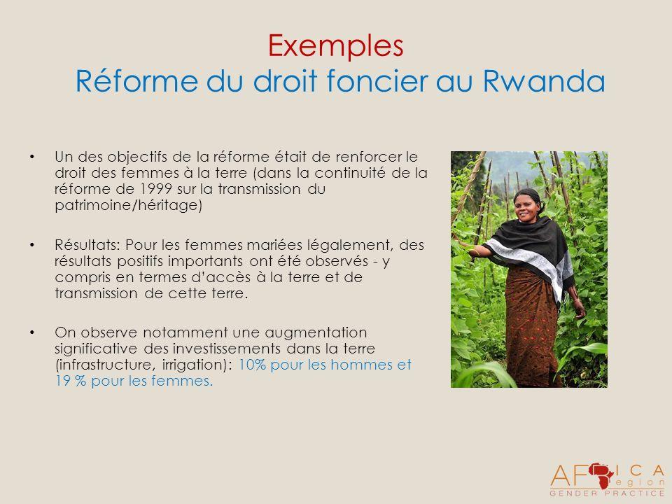 Exemples Réforme du droit foncier au Rwanda Un des objectifs de la réforme était de renforcer le droit des femmes à la terre (dans la continuité de la réforme de 1999 sur la transmission du patrimoine/héritage) Résultats: Pour les femmes mariées légalement, des résultats positifs importants ont été observés - y compris en termes daccès à la terre et de transmission de cette terre.