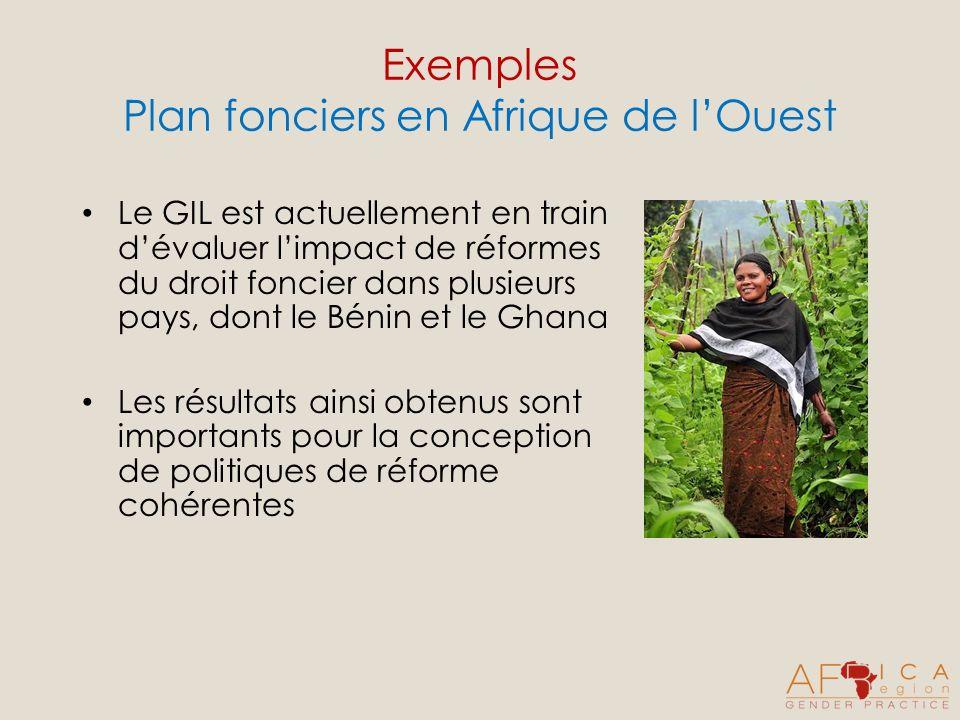 Exemples Plan fonciers en Afrique de lOuest Le GIL est actuellement en train dévaluer limpact de réformes du droit foncier dans plusieurs pays, dont le Bénin et le Ghana Les résultats ainsi obtenus sont importants pour la conception de politiques de réforme cohérentes