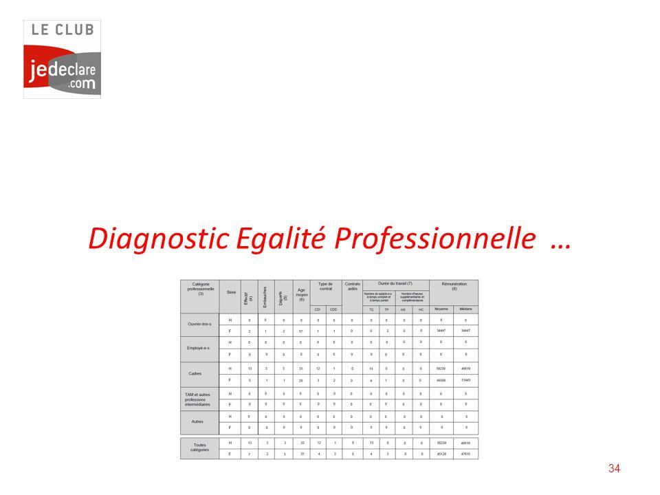 34 Diagnostic Egalité Professionnelle …