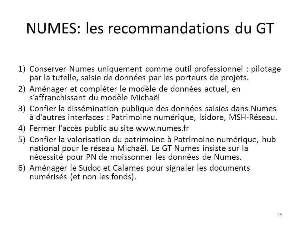 NUMES: les recommandations du GT 1)Conserver Numes uniquement comme outil professionnel : pilotage par la tutelle, saisie de données par les porteurs de projets.