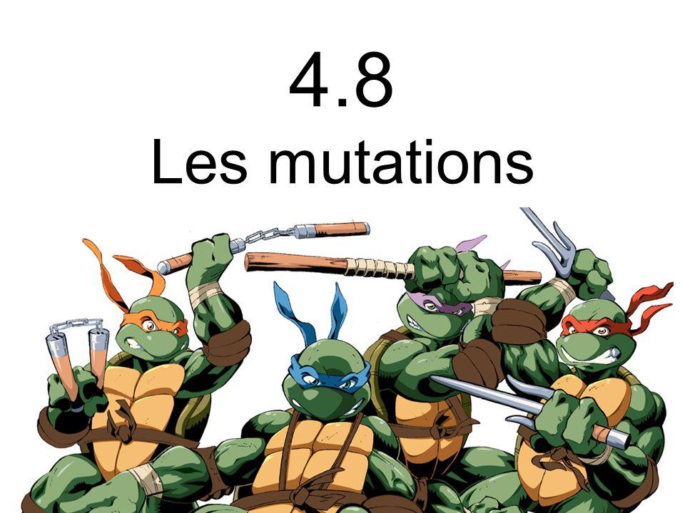 _ _ Mutations Sont des modifications de lADN qui sont transmises lors de la réplication 7 TYPES Substitution Insertion Inversion Copies Suppression Brisure Perte