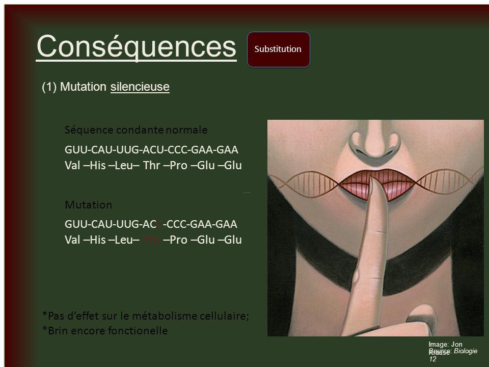 _ _ Conséquences (1) Mutation silencieuse Substitution Image: Jon Krause Source: Biologie 12 GUU-CAU-UUG-ACU-CCC-GAA-GAA Val –His –Leu– Thr –Pro –Glu