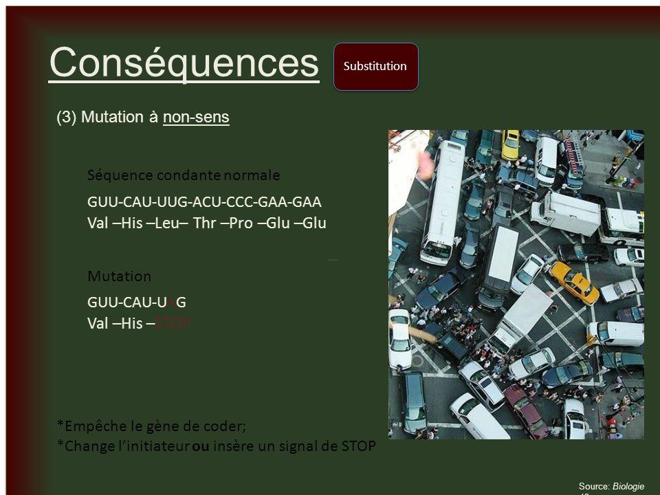 _ _ Conséquences (3) Mutation à non-sens Substitution Source: Biologie 12 GUU-CAU-UUG-ACU-CCC-GAA-GAA Val –His –Leu– Thr –Pro –Glu –Glu Séquence conda