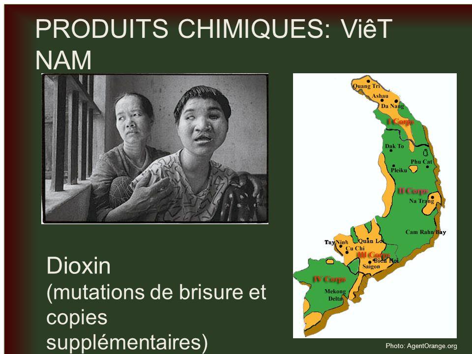 _ _ PRODUITS CHIMIQUES: ViêT NAM Dioxin (mutations de brisure et copies supplémentaires) Photo: AgentOrange.org