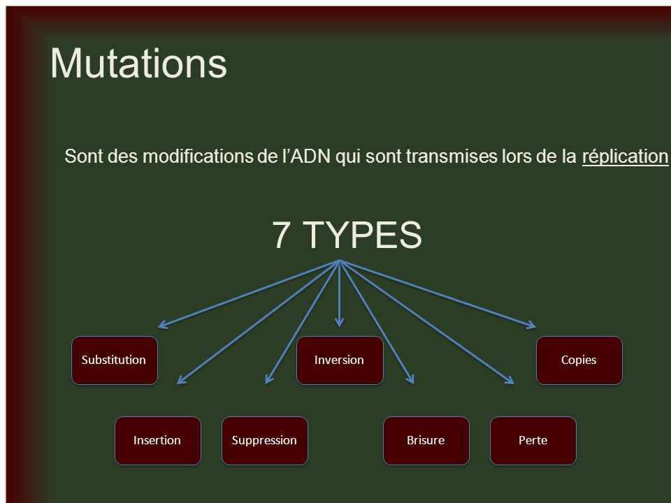 _ _ Conséquences Insertion Suppression Mutation décalage GUU-CAU-UUG-ACU-CCC-GAA-GAA Val –His –Leu– Thr –Pro –Glu –Glu Séquence condante normale GUU-CAU-GUU-GAC-UCC-CGA-AGA-A Val –His –Val– Ala –Ser –Arg –Arg Séquence avec insertion A GUU-CAU-UUG-CUC-CCG-AAG-AA Val –His –Leu– Leu –Pro –Lys Séquence avec suppression Mutation non-sens OU Mutation contre-sens *Mais sil y a insertion et suppression au même lieu, ce serait une mutation contre-sens