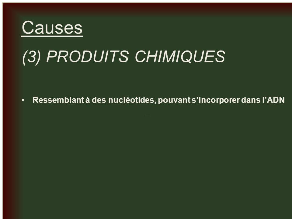 _ _ Causes (3) PRODUITS CHIMIQUES Ressemblant à des nucléotides, pouvant sincorporer dans lADN
