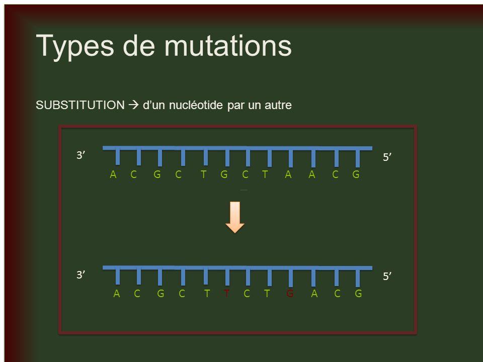 _ _ Types de mutations INSERTION dun ou plusieurs nucléotides dans la séquence dADN 3 5 A C G C T G C T A A C G 3 5 A C G C T G C T T C A A C G