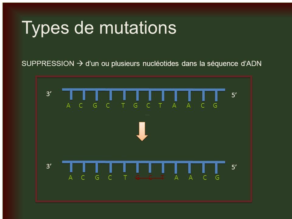 _ _ Types de mutations INVERSION dune partie de la séquence nucléotidique 3 5 A C G C T G C T A A C G 3 5 A G C T C G C T A A C G