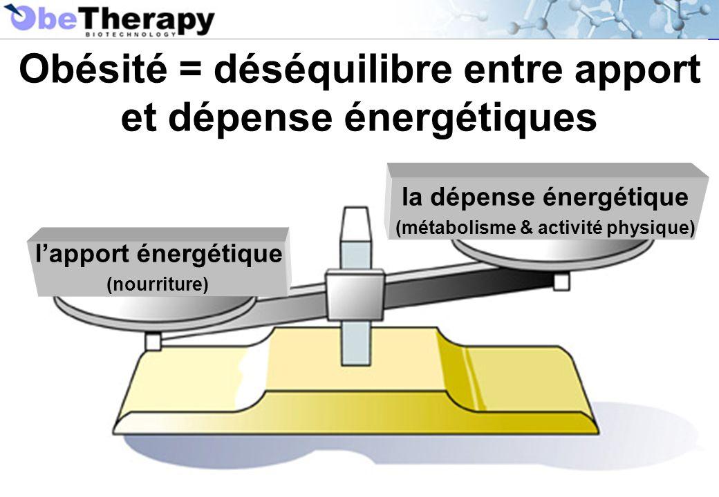 Obésité = déséquilibre entre apport et dépense énergétiques lapport énergétique (nourriture) la dépense énergétique (métabolisme & activité physique)
