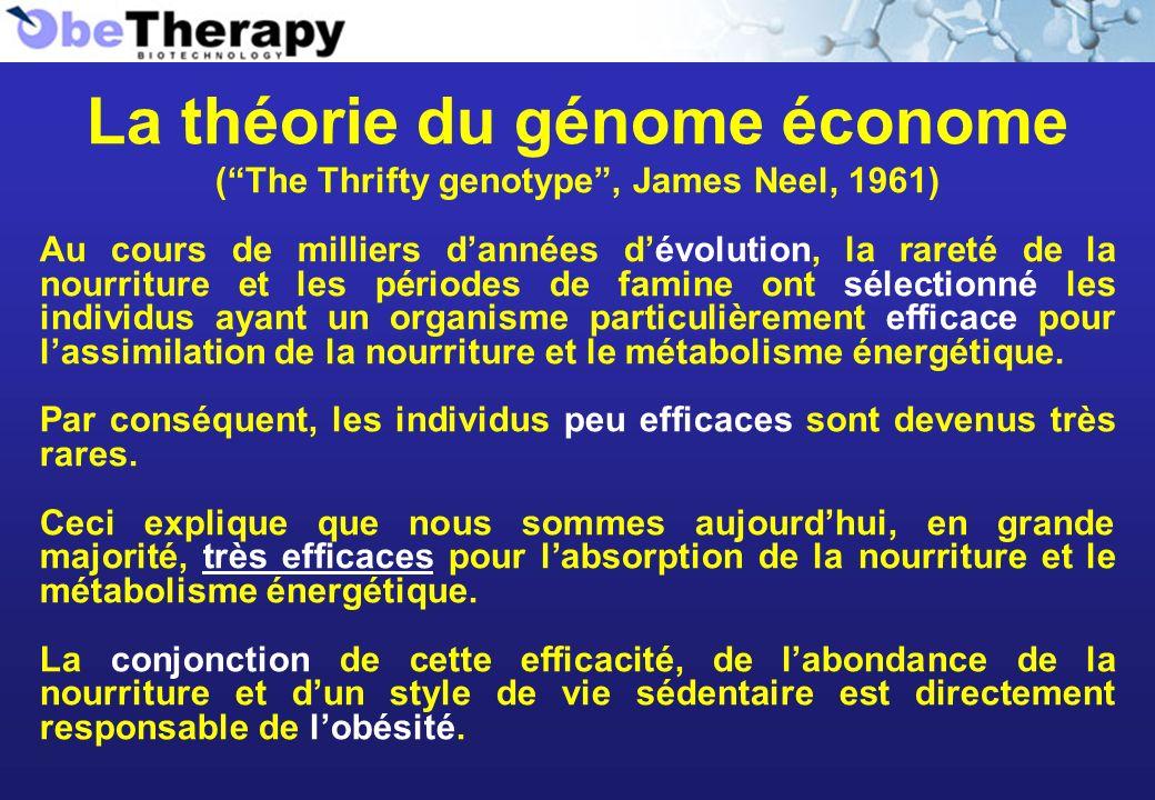 La théorie du génome économe (The Thrifty genotype, James Neel, 1961) Au cours de milliers dannées dévolution, la rareté de la nourriture et les pério