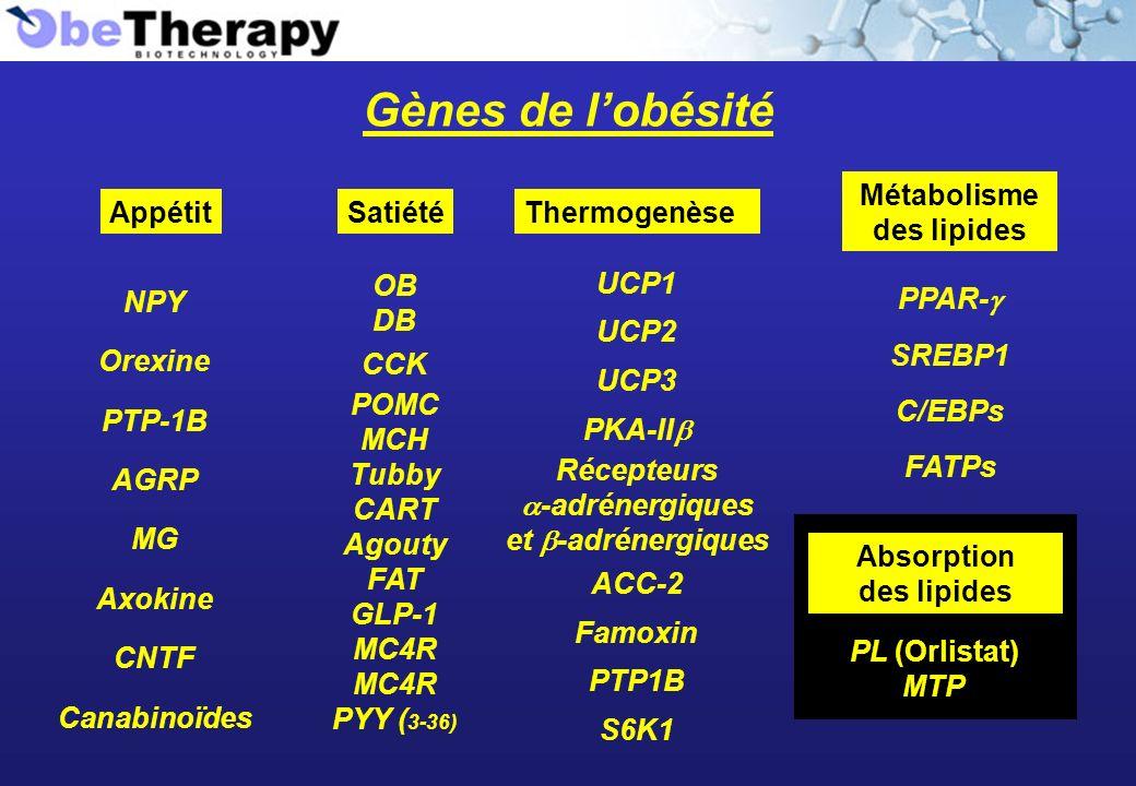 Gènes de lobésité Appétit NPY Orexine PTP-1B AGRP MG Axokine CNTF Canabinoïdes Satiété OB DB CCK POMC MCH Tubby CART Agouty FAT GLP-1 MC4R PYY ( 3-36)