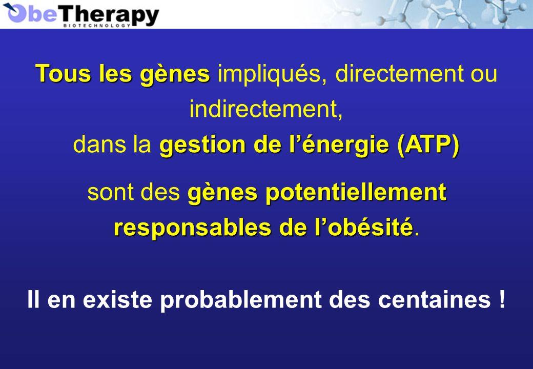 Tous les gènes Tous les gènes impliqués, directement ou indirectement, gestion de lénergie (ATP) dans la gestion de lénergie (ATP) Il en existe probab