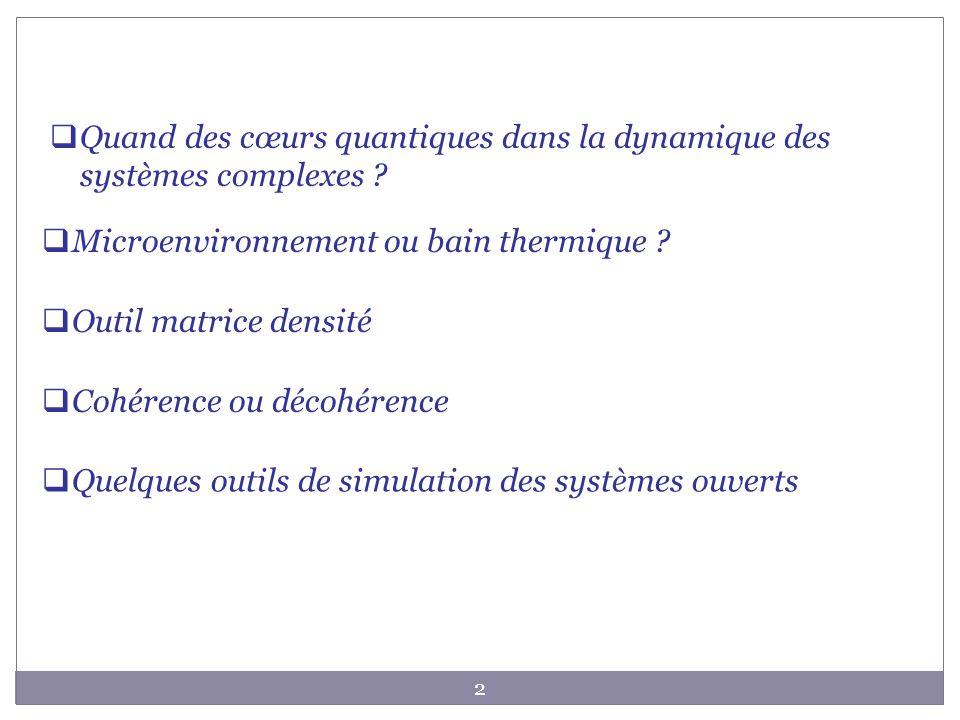 23 Information sur la dynamique du sous espace en interaction avec le bain Equation pour la matrice densité réduite Mémoire = Intégration sur le temps impliquant toute lhistoire du système Perturbation au second ordre Les outils de simulation des systèmes ouverts