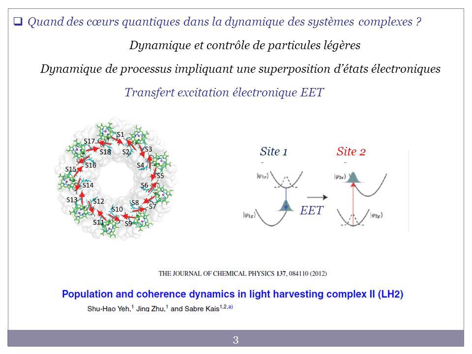 3 Dynamique de processus impliquant une superposition détats électroniques Transfert excitation électronique EET Quand des cœurs quantiques dans la dy