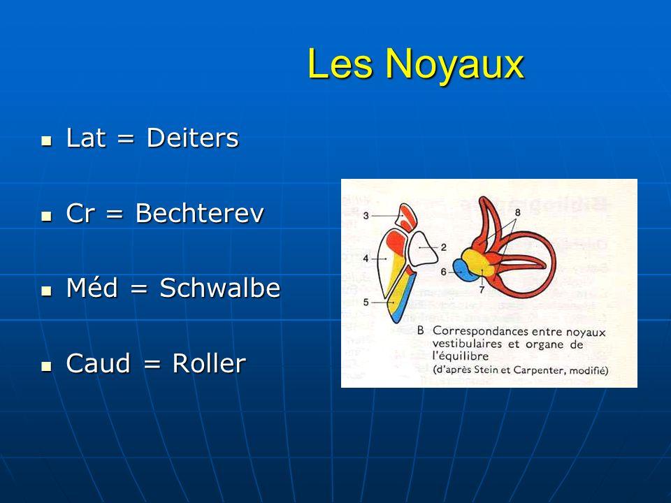 Les Noyaux Les Noyaux Lat = Deiters Lat = Deiters Cr = Bechterev Cr = Bechterev Méd = Schwalbe Méd = Schwalbe Caud = Roller Caud = Roller