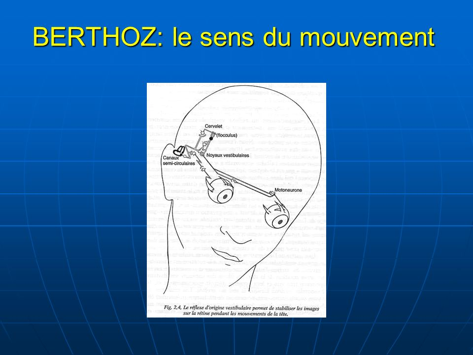 BERTHOZ: le sens du mouvement