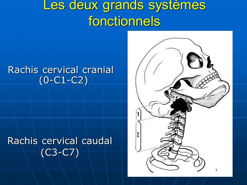Les deux grands systèmes fonctionnels Rachis cervical cranial (0-C1-C2) Rachis cervical cranial (0-C1-C2) Rachis cervical caudal (C3-C7)