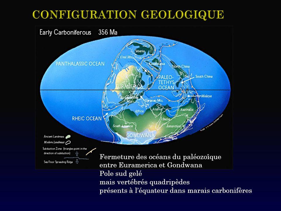 Fermeture des océans du paléozoîque entre Euramerica et Gondwana Pole sud gelé mais vertébrés quadripèdes présents à léquateur dans marais carbonifère
